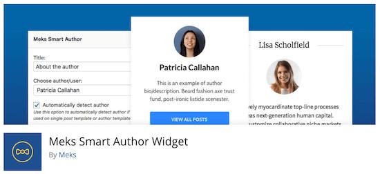 plugin tiểu sử tác giả Meks Smart Author widget