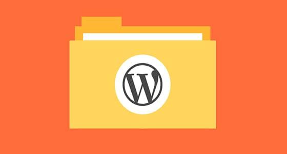 luu tru wordpress